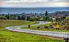 January 5, 2013 - the curve, Santa Cruz