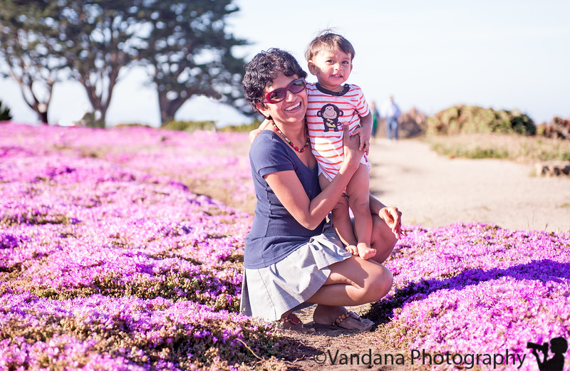 May 12, 2013 - Happy Mother's day ! On bed of pink flowers at Monterey, CA  weekend trip to the city, Santa Cruz, Monterey !