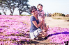 May 12, 2013 - Happy Mother's day ! On bed of pink flowers at Monterey, CA<br /> <br /> weekend trip to the city, Santa Cruz, Monterey !