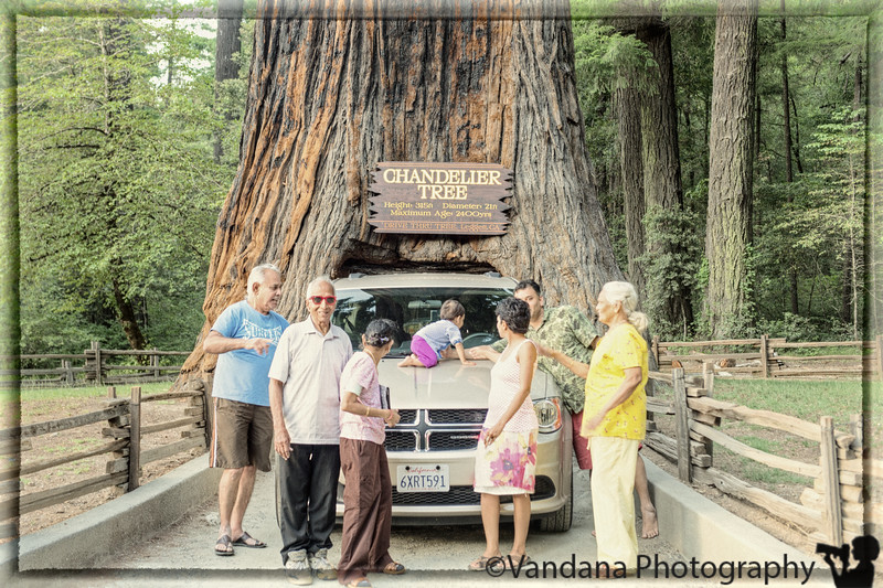 July 4, 2013 - Thru the 2400 year old drive-thru Redwood tree ! <br /> <br /> Start on a long weekend trip to Redwood National Park ! Arjun is feeling better, but has given his cold to me ! Loved this picture, taken by the park ranger - nobody is looking at the photographer !