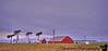 January 3, 2013 - Farmland