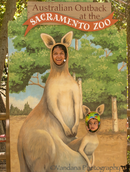 June 8, 2014 - a trip to the Sacramento Zoo  being silly at the zoo, in >100F heat !