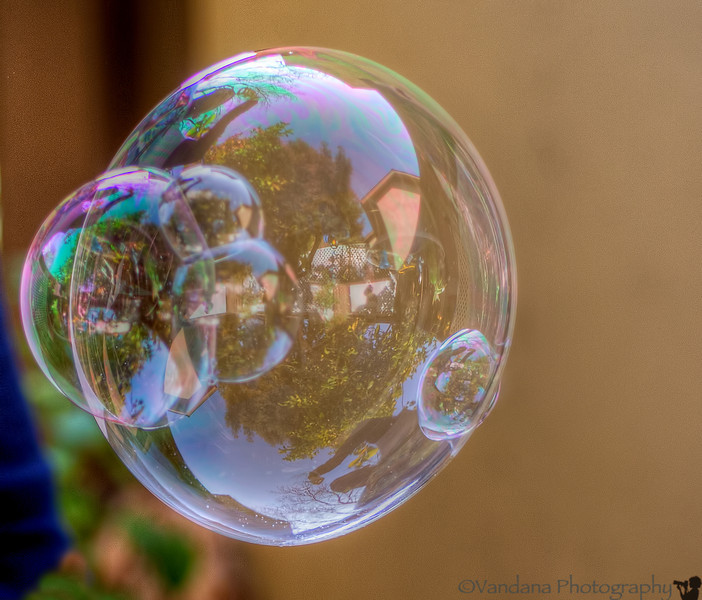 January 20, 2014 - the world inside a bubble