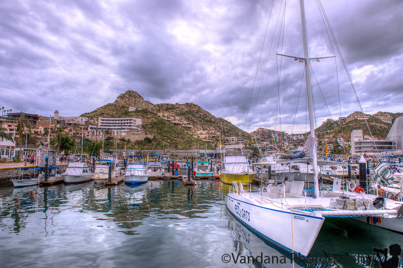 November 15, 2014 - Reflections, Cabo San Lucas<br /> <br /> Back to Long beach, CA, end of cruise !