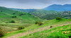 March 9, 2014 - Views of Mt.Diablo<br /> so green after the rains !