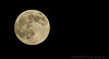 July 11, 2014 - the supermoon