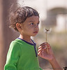 February 22, 2014 - Wish upon a dandelion