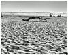 June 28, 2014 - At Pompanio State beach