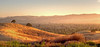 June 26, 2014 - Ygnacio Valley at sunset<br /> <br /> I havent yet found a good lookout point to take a nice photo with tripod and all..this is from the car !