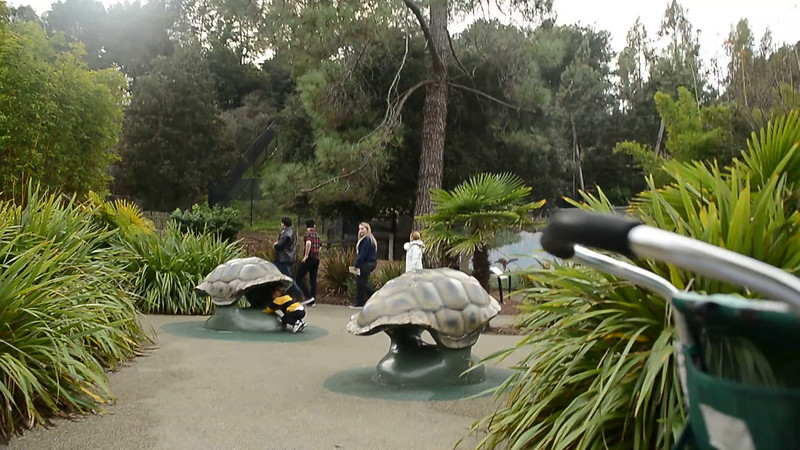 December 15, 2014 - a video of Arjun playing with turtle shells at Oakland zoo