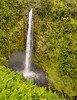 May 3, 2014 - Hilo, Hawaii ! <br /> <br /> Hike to Akaka falls, Hilo, HI. hot, humid and beautiful, Arjun's first real hike !