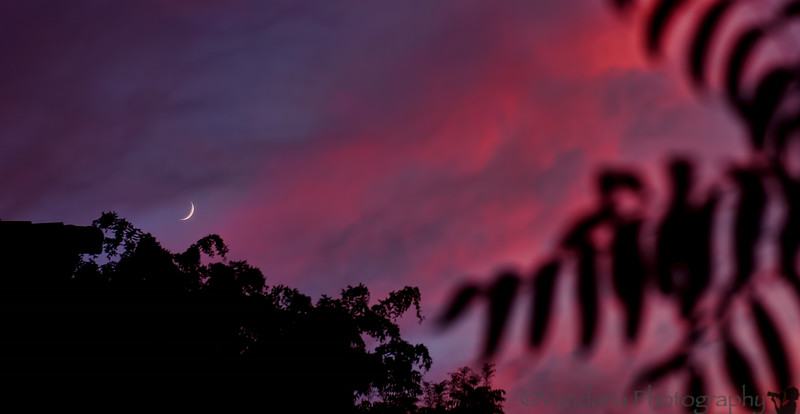 July 3, 2014 - New moon rise