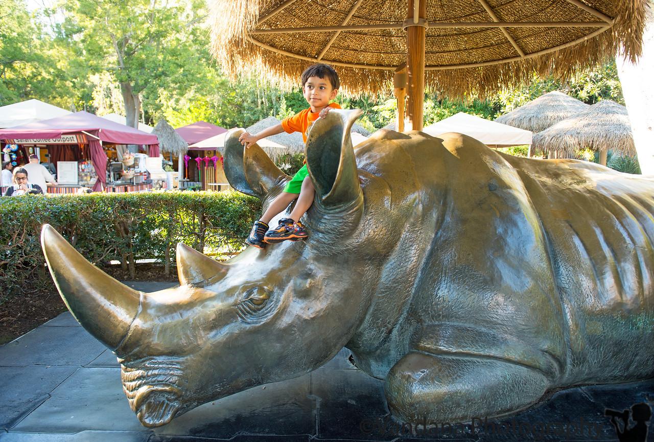 december 23, 2014 - arjun riding the rhino, san diego safari park