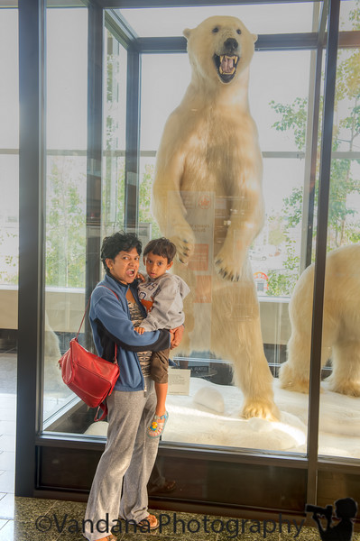 August 14, 2015 - At the Anchorage airport. Back to California today. Such an awesome vacation ! Growling with the polar bear at the airport. <br /> <br /> Lost a circular polariser ( somewhere around Eklutna lake); a Nikon lenscap; a book - 'Arctic tale', so wonderful, read 3 times already, then promptly lost in Alaska Airlines plane ! but vacation, priceless