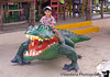 December 28, 2015 - Riding the alligator