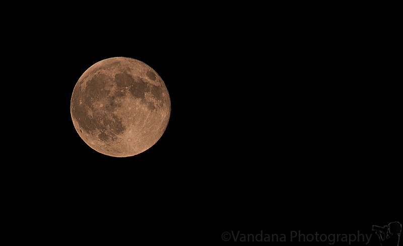 August 29, 2015 - the Supermoon<br /> <br /> a tiring day at Six Flags, Vallejo riding on elephants, watching dolphin show..