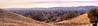 December 8, 2015 - Ygnacio Valley Panorama<br /> <br /> taken at a nice hike in Lime Ridge Open space, Walnut Creek