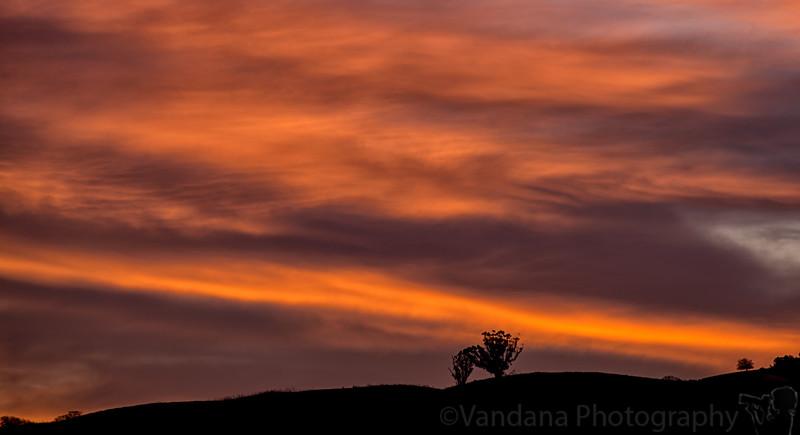 January 17, 2014 - Red sky at morning, Shepherd take warning..
