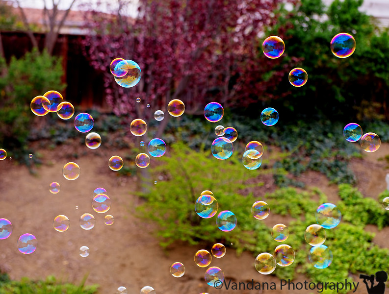 March 24, 2015 - Playing with bubbles