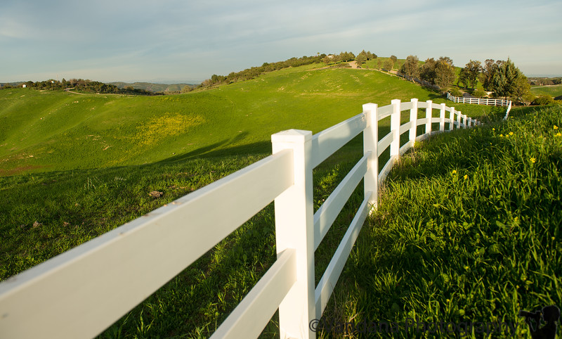 February 15, 2015 - The winding fence