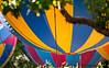 May 29, 2015 - Balloon ride !