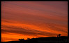 March 13, 2015 - a glorious sunrise