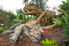 December 4, 2016 - Dinosaurs un-extinct, at LA Zoo - T.Rex having just attacked a Triceratops<br /> <br /> almost alive Dino robots, moving around a bit, and making dino noises, such a blast !
