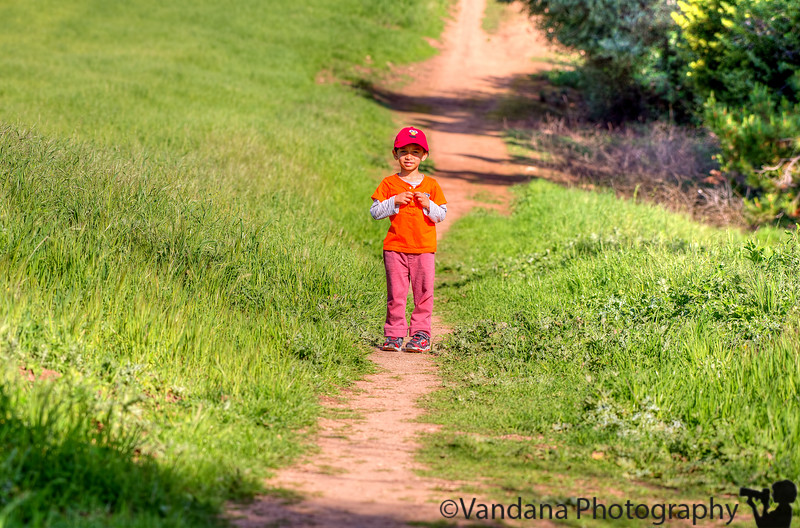 March 17, 2016 - Hiking the Blue Oak Trail, Lime RIdge Open Space