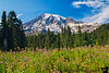 September 3, 2017 - Mt.Rainier<br /> <br /> Back in Seattle ! and a quick day trip to Rainier National Park !