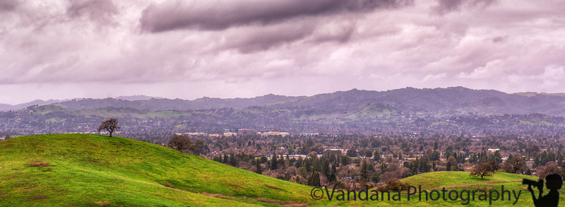 January 23, 2017 - the lovely valley after the rains