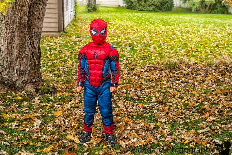 October 31, 2018 - Spiderman is in the house ! <br /> Happy Halloween !