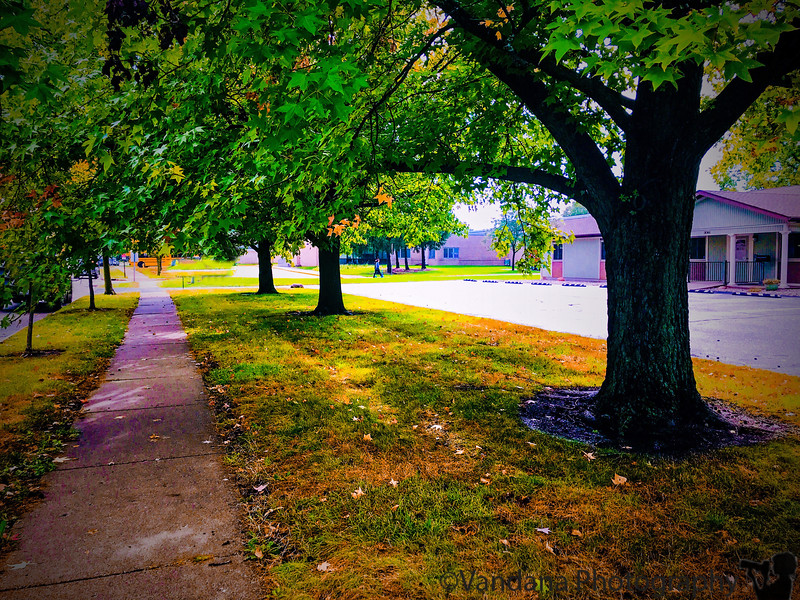 October 1, 2018 - Walk to school