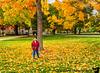 October 26, 2018 - Arjun under the golden fall tree