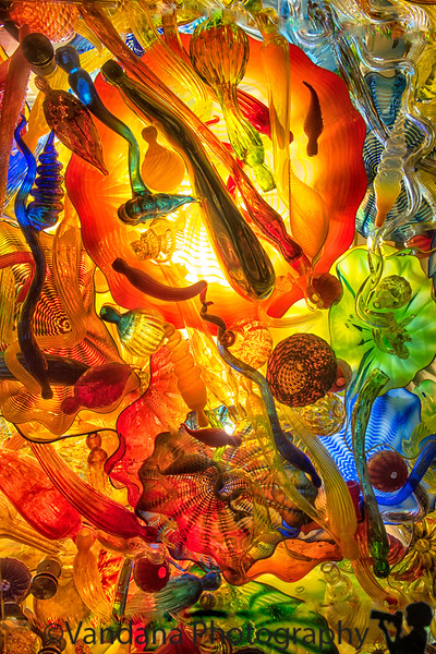 September 11, 2018 - Chihuly glass exhibit, at Children Museum of Indianapolis