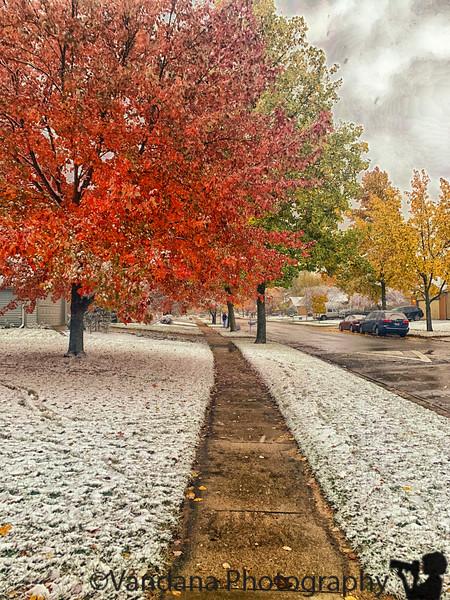 November 21, 2019 - Fall and snow