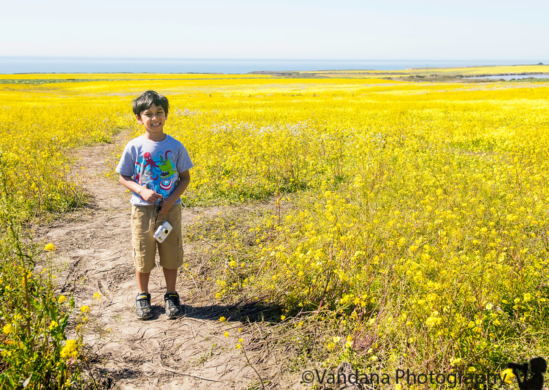 April 16, 2019 - A with the superbloom in CA