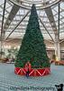 November 25, 2019 - A with Christmas tree