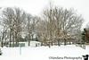 January 27, 2019 - Fresh snow