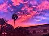 December 2, 2019 - Sunset in florida