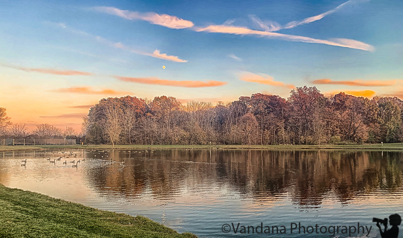 November 24, 2019 - Sunset, geese, and reflections