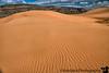 June 29, 2019 - Coral Pink Sand Dunes State Park, UT