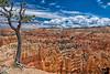July 13, 2019 - Bryce Canyon National Park, UT