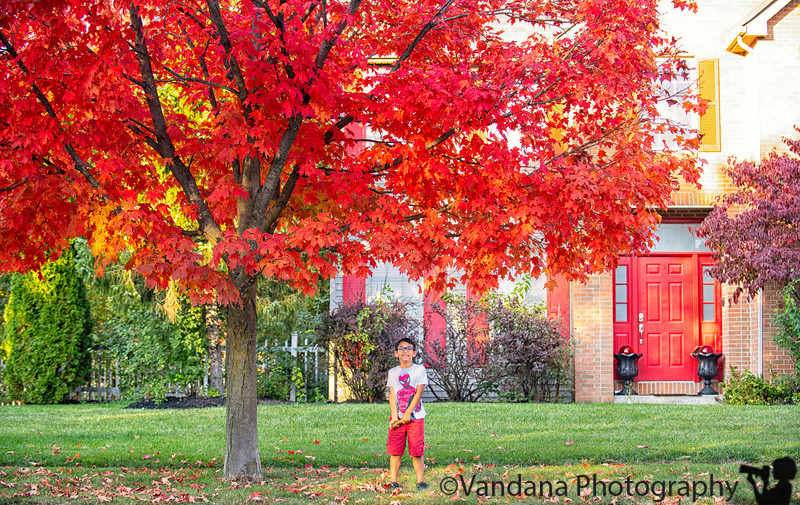 October 2, 2019 - Red leaves and red door