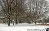 January 24, 2019 - Snow paths