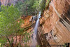 June 8, 2019 - Emerald Pools trail, Zion National Park. <br /> <br /> Walking under the water on a warm day !