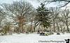 Feb 9, 2019 - Veterans Memorial park