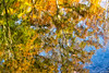 October 26, 2020 - Abstract - fall reflections