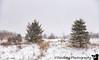 February 21, 2020 - a bit of snow