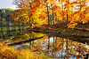 October 18, 2020 - Fall at Brown County State Park, IN