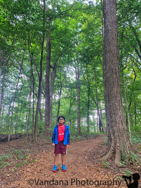 September 2, 2021 - Walking in Cumberland Park ( In between chess games !)